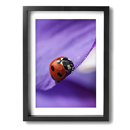 Achujuyou Canvas Wall Art Decor Ladybug Baby Framed Prints Painting Modern Artwork Pictures Ready to Hang Home Decoration 12x16in