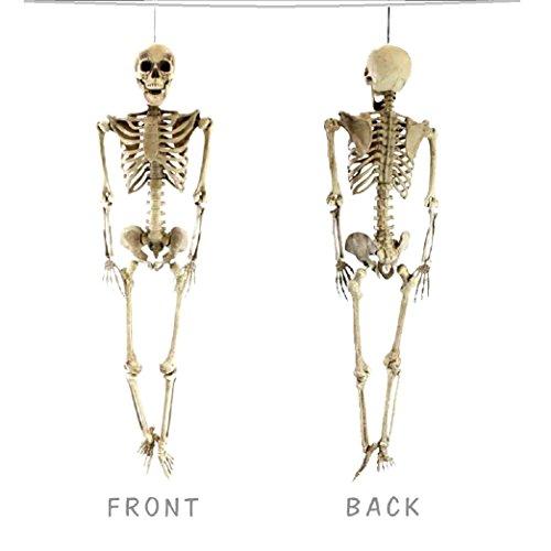 5' Hanging Skeleton - 5