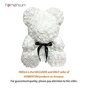 Homentum Rose Bear Teddy Forever Artificial Flowers are The Best Gifts for Valentine's Day,Anniversaries, Birthdays, Weddings(White, Small) 114