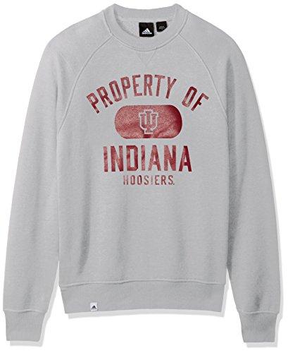 NCAA Indiana Hoosiers Adult Men NCAA Property of Fleece Crew,Large,Gray ()