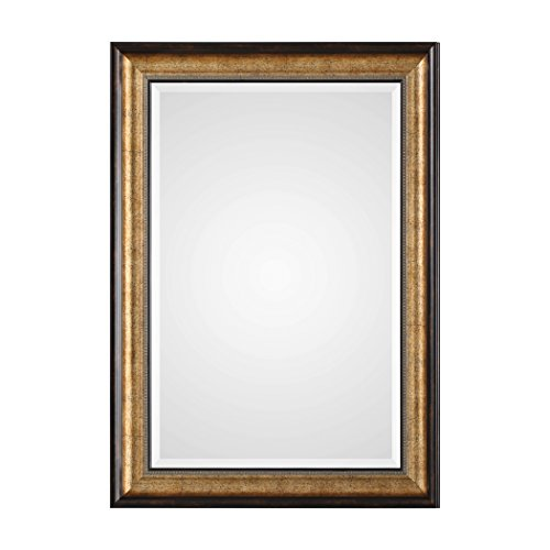Classic Traditional Bronze Champagne Wall Mirror | Vanity Simple Gold Two (Entry Hall Mirror)