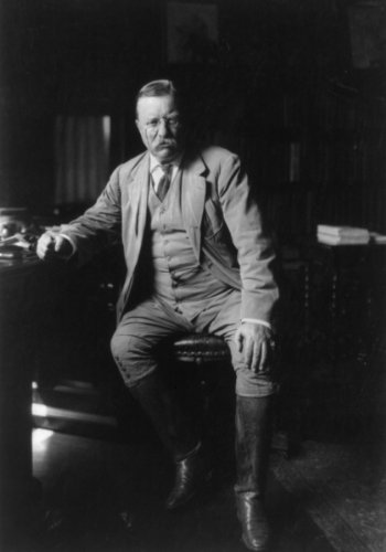 (1912 photo of Theodore Roosevelt in library at Oyster Bay. Size: 7x10. Qualit c3)