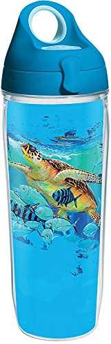 Tervis 1286922 Guy Harvey - Mirage Turtle Tumbler with Wrap and Turquoise Lid 24oz Water Bottle, Clear