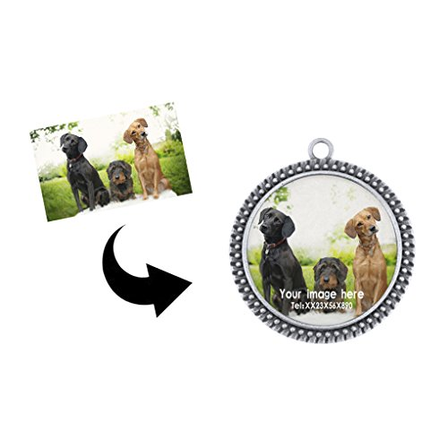 Personalized Pet ID Tags Dogs Cats Charm Designer Safe Smart 3D Rhinestone Cover Engraved&Customzied Pet Name Image Address Phone Number&2D Barcode Identification Plate Tag Hanging - Plate Blue 2d