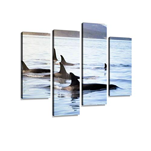 (Pod of Orca (Killer Whales) Canvas Wall Art Hanging Paintings Modern Artwork Abstract Picture Prints Home Decoration Gift Unique Designed Framed 4 Panel)