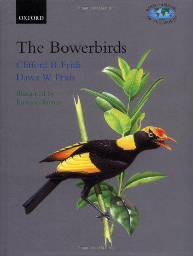 The Bowerbirds: Ptilonorhynchidae (Bird Families of the World)