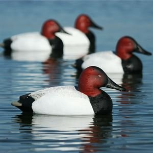 Avery Greenhead Gear, Oversize Fixed Keel Drake Duck Decoys, 73049 - 6 Pack by Avery Outdoors (Image #1)