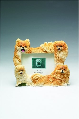 Pomeranian Picture Frame Holds Your Favorite 4 x 8 Inch Photo,  A Hand Painted Realistic Looking Pomeranian Family Surrounding  Your Photo. This Beautifully Crafted Frame is A Unique Accent To Any Home or Office. The Pomeranian Picture Frame Is The Perfect Gift For Pomeranian Owners And Lovers!