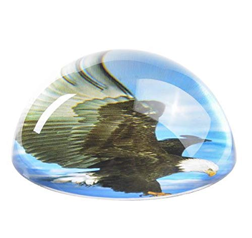 80 MM Dome Paperweight Eagle, Case of 36