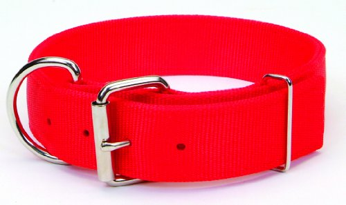Macho Dog Double-Ply Nylon Collar with Roller Buckle
