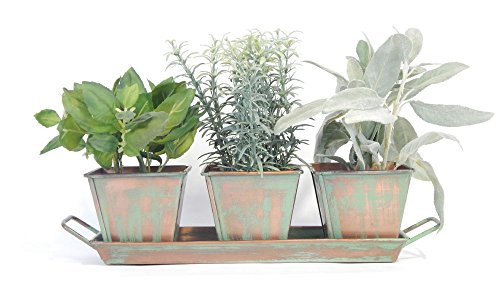 Culinary Herb Garden Set (Copper Patina) - 5 Herb Packets, 3 Pots and Tray, Soil & Labels 3 Garden Pots