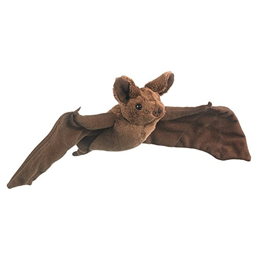 Mexican Free Tailed Bat 8.5