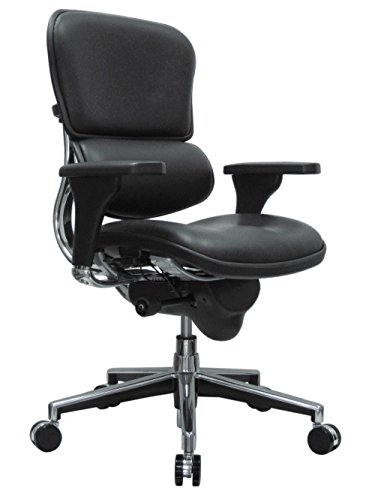 - Eurotech Seating Ergohuman LE10ERGLO(N) Mid Back Leather Swivel Chair, Black