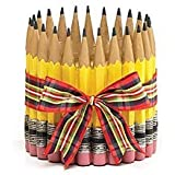 Pencil Shape Planter/Vase For Teacher,Classroom, Student, Home Decor