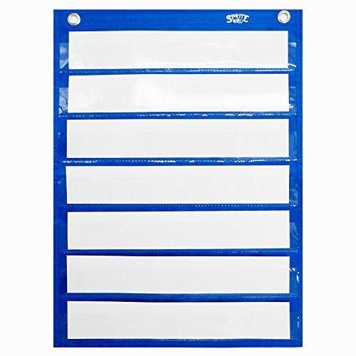 Magnetic Pocket Chart with 10 Dry Erase Cards for Standards,Daily Schedule,Activities,Class demonstrations (Signs School Center)