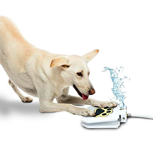 Trio Gato's Outdoor Dog Pet Water Sprinkler Easy Activated Dog Water Fountain Toy ()