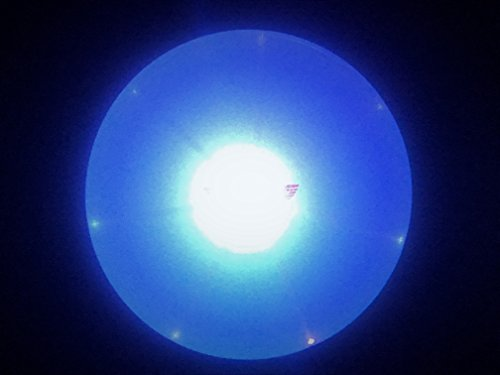 - Buzz Shop Gear LED Light Up Frisbee Flying Disc for Ultimate Night Time Play
