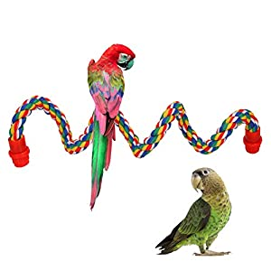 iLeson Bird Rope Perches Stand Ladder Toys for Parrots Parakeets Cockatiels Conures Macaw Budgies Swing Lovebird Cage…