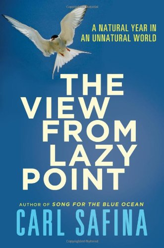 The View from Lazy Point: A Natural Year in an Unnatural World for $<!--$6.00-->