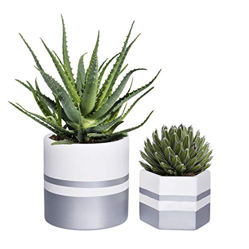 7 Inch Pack of 2 White Modern Ceramic Indoor Planter Pots with Drainage Hole, Flower Plant Pots with Silver Detailing, Plants Pot for Succulents, Houseplants, Aloe, Herbs, Fern, Snake Plant - Inch 7 Planter
