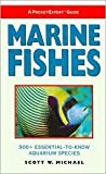 img - for Marine Fishes: 500+ Essential-to-Know Aquarium Species (Pocketexpert Guide Series) by Scott W. Michael, Scott W. Michael (Photographer), Janine Cairns-Michael (Photographer) book / textbook / text book