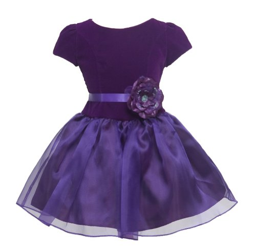 KID Collection Girls Drop Waist Velvet Dress 12 Purple (kid 1215) Beaded Silk Organza Dress