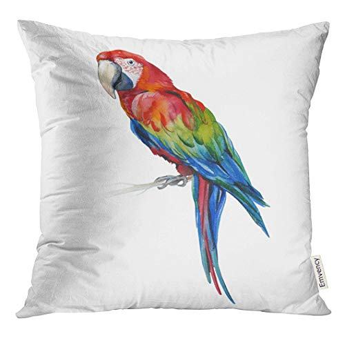 - Emvency Throw Pillow Cover Scarlet Macaw Parrot Ara Macao Watercolor of Tropical Bird Trendy with Tropic Summertime Exotic Decorative Pillow Case Home Decor Square 20x20 Inches Pillowcase
