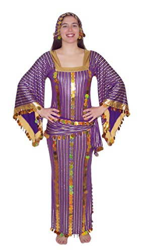 Dancing Dresses And Costumes (Egypt Mart Women Belly Dance Folkloric Baladi Egyptian Galabeya Dancing Dress Costume (S/M, Purple& Gold))
