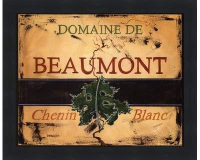 Chenin Blanc by Deb Collins – 10 x 8インチ – アートプリントポスター LE_613679-F101-10x8 B01MTYLQYX Classic Black Frame