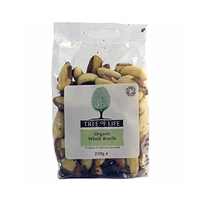 Tree of Life Organic Whole Brazil Nuts 250g