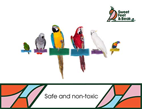 Sweet Feet and Beak Comfort Grip Safety Bird Pumice Perch - Patented Perch - Keeps Nails and Beak in Top Condition - Imitates Birds' Life in The Wild - Non-Toxic - Hangs Easily - Medium - Blue