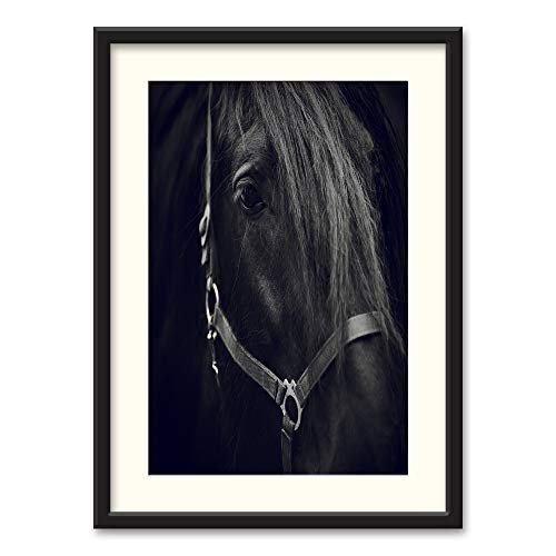 horse framed art - 5