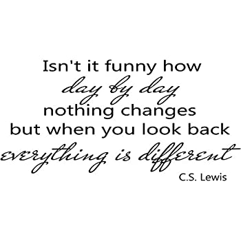Amazon Quote It Isn't It Funny How Day By Day Nothing Changes Stunning Cs Lewis Quotes On Life
