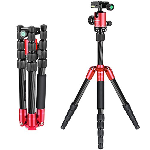 56 Carbon (Neewer Carbon Fiber 56 inches/141 centimeters Portable Mini Tripod with 360 Degree Ball Head,1/4 inches Quick Release Plate, Bag for Canon Nikon Sony Camera, Camcorder, up to 6.6 pounds/3 kilograms)