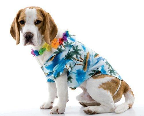 PMG Zelda Wisdom Hawaiian Dog Pet Dog Costume, Size Small]()
