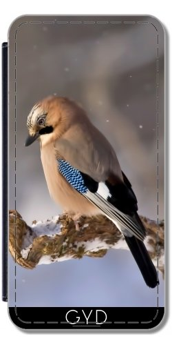 Leder Flip Case Tasche Hülle für Apple Iphone 7 Plus / 8 Plus - Winter Jay by Grab My Art