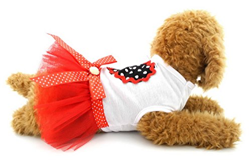 Dot Poodle Dress - 6