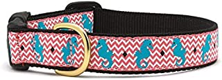 product image for Up Country Seahorse Dog Collar Large 1 Inch Wide Width (15 inches to 21 inches)