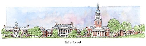 Wake Forest University - Collegiate Sculptured Ornament by Sculptured Watercolor Ornaments