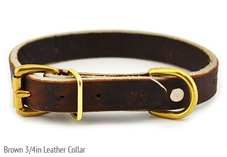 "Leerburg's Amish Soft Latigo Leather 1"" Wide Collar (sizes fit necks 13""-17"")"