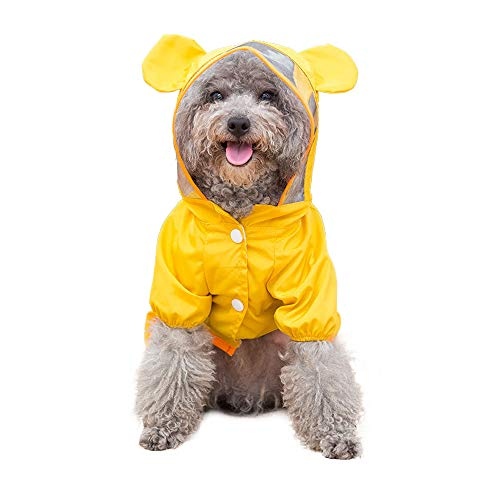 (Spring Fever Dog Cartoon Transparent Hooded Poncho Cartoon Costume Raincoat Bear L)