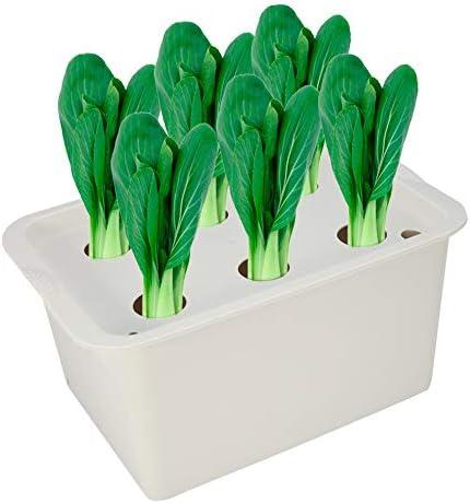 Zerodis Hydroponik Anzuchttopf Pflanztopf Blumentopf Soilless Gemüseanbau Gemüse Pflanzen Pflanzenwachstum 6 Löcher für Indoor Outdoor(Grau)