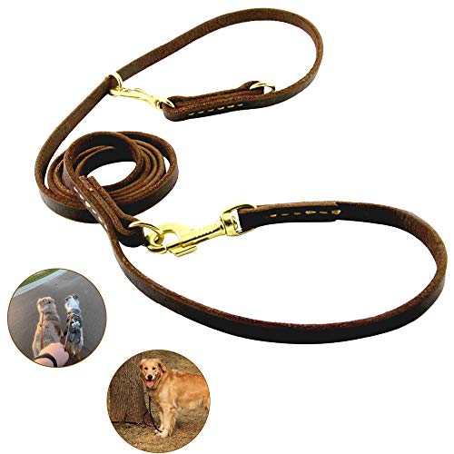 Jpettie Leather Dog Leash Training Leash Leads Rope Multi-Function 8ft Long Leather Dog Leash Genuine Bridle Leather, Hands-free Dog Leash/Walk P-Leash, Perfect for Small Large Medium Dog, Dark Brown