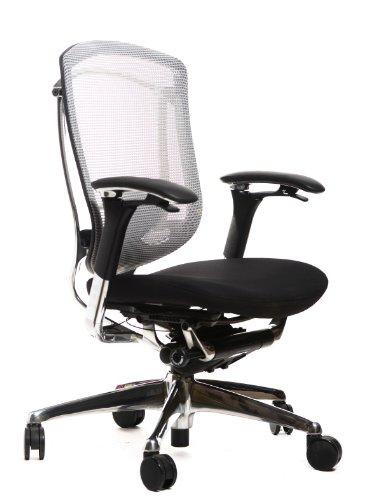 Contessa Chair - Teknion Contessa Task Chair