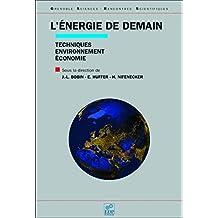 L'énergie de demain: Techniques, environnement, économie (Grenoble sciences) (French Edition)