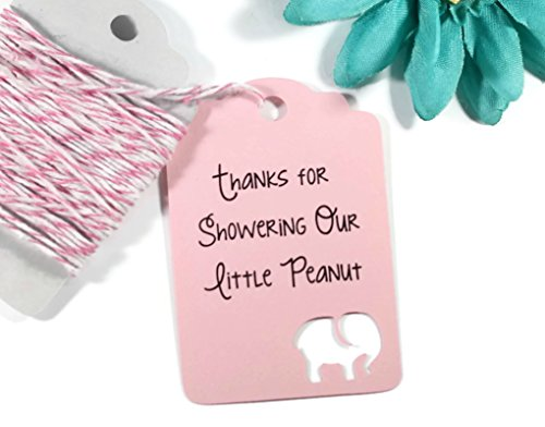 Light Pink Elephant Baby Shower Tags – Baby Pink Thank You Tags – Thanks for Showering Our Little Peanut (Set of 40)