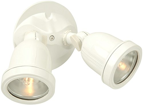 Craftmade Z412-4 Outdoor Directional Light with Halophane Lens Shades, White Finish