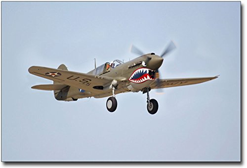 Curtiss P-40 Warhawk WWII Fighter Plane 8x12 Silver Halide Photo Print