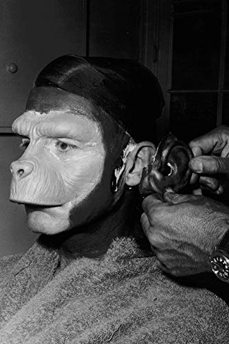 Roddy McDowall in Planet of The Apes Having ape Costume Make up Applied 24x18 -