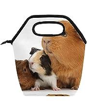 Grote lunchbox, warm, lunchtas, zachte handgrepen, lunchbox voor kantoorwerk, reizen, picknick, schattig, cavia's